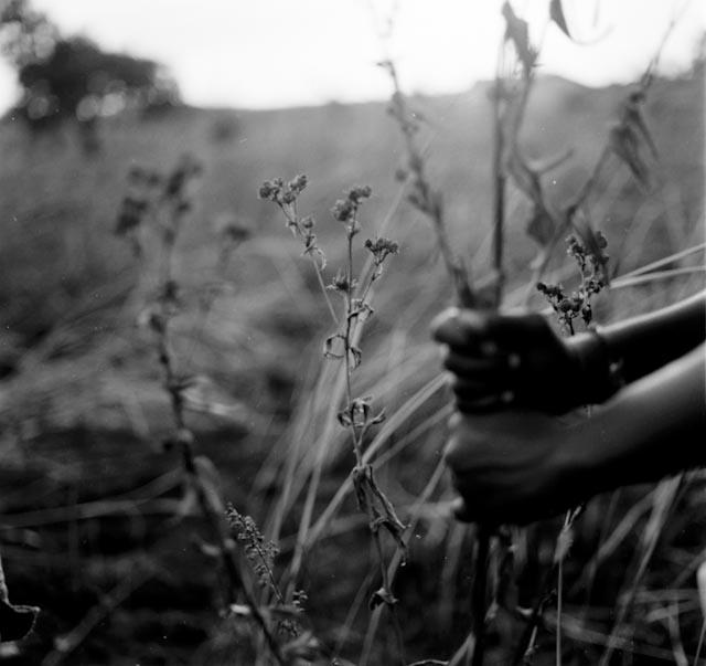 Art and Documentary Photography - Loading n016.jpg