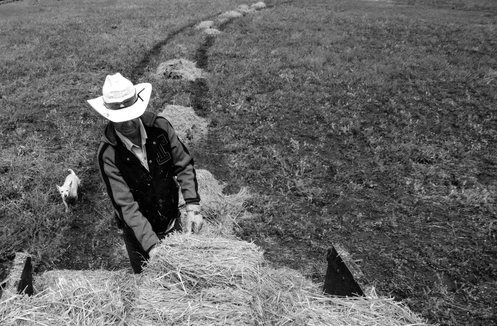 Juan, escorted by Stuart, has a system when setting hay out in the pastures.  He sets up the 4-wheeler on a low gear then climbs out and follows behind, spreading the hay.