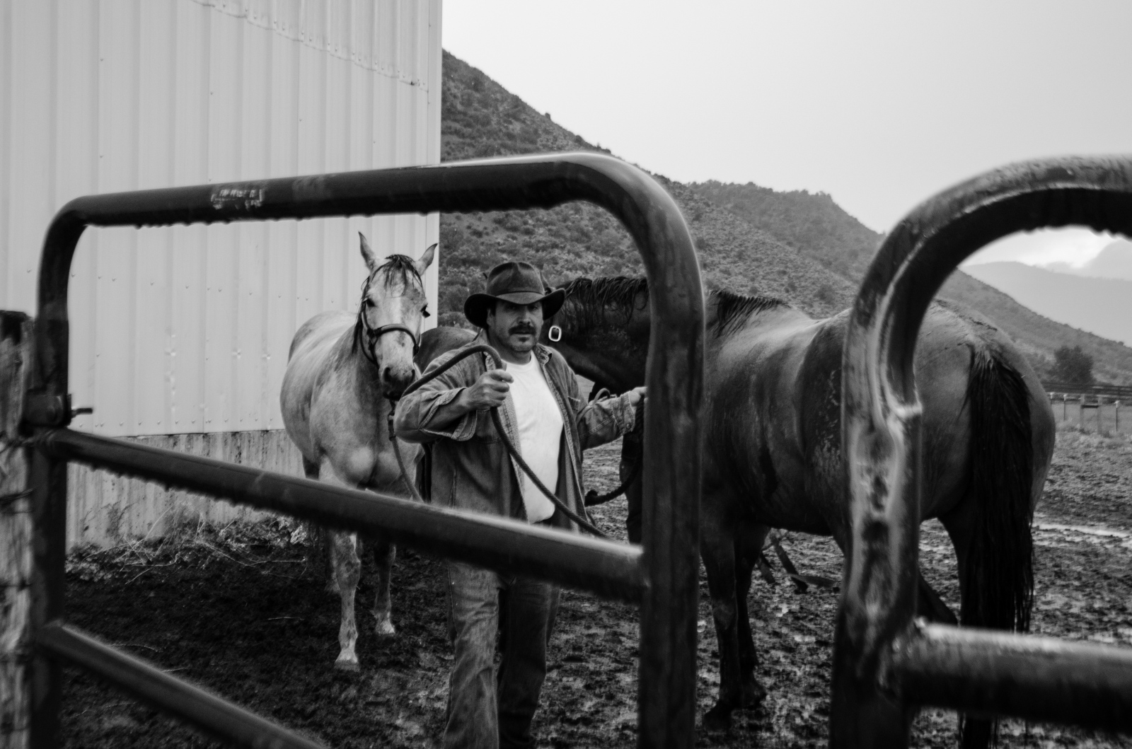 Jose G. leads in two horses for the afternoon feeding.  It is not uncommon to see the men harness and lead up to five horses at a time.  They are intimately familiar with the personalities of the over 80 horses.