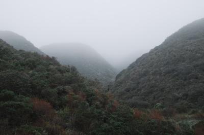 North Coast, Santa Cruz County, California 2015