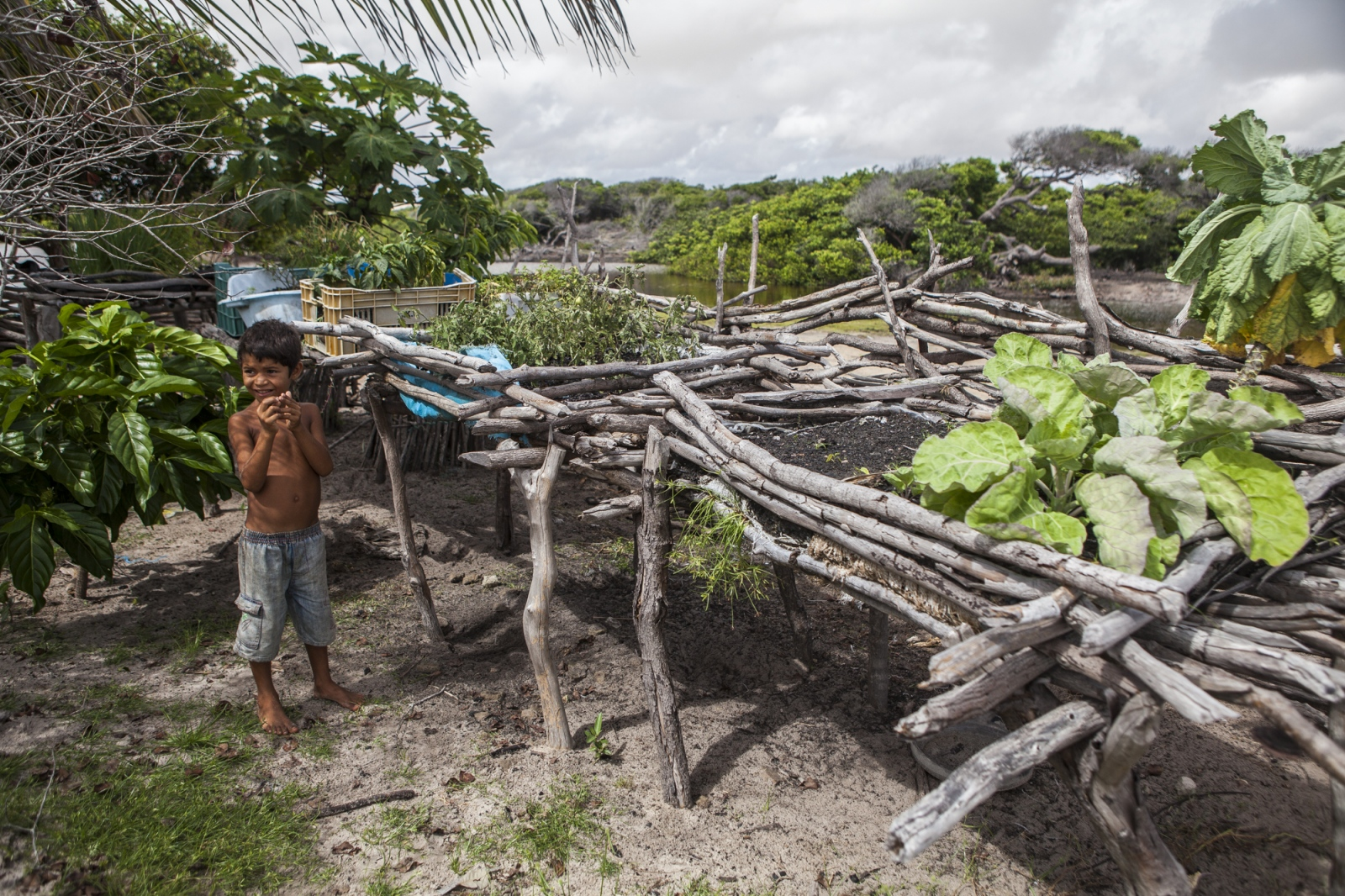 Julião Brito, 7, plays next to the small garden use to farm a few vegetables. The locals of Queimada dos Britos don't grow many plots of land since they are afraid of the accelerating advance of the dunes that have already covered several houses.