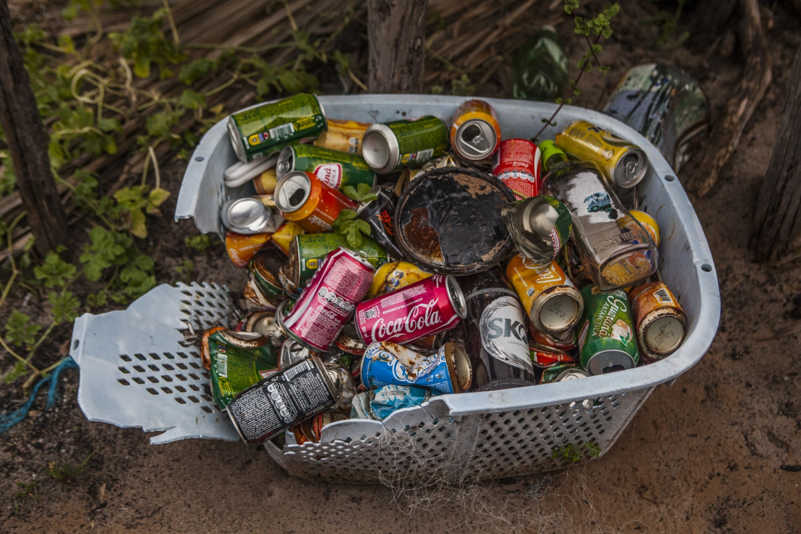 Basket of old soda cans sold to tourists that walked in to the Queimada dos Britos. Tourism is reaching the quiet life of Queimada dos Britos which is well received when the visitors walk in. Locals keep a stock of drinks that they sell to tourists as a way to make some money that allows them to buy some necessary products like clothes, coffee and rice. The downturn is that more and more agencies from nearby cities are bringing tourists into the park on motor vehicles that on the locals view are affecting environmentally the park and their peaceful life.