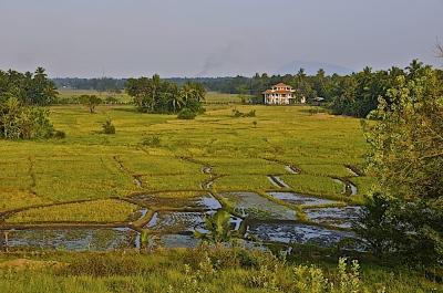 Sri Lanke - Landscapes