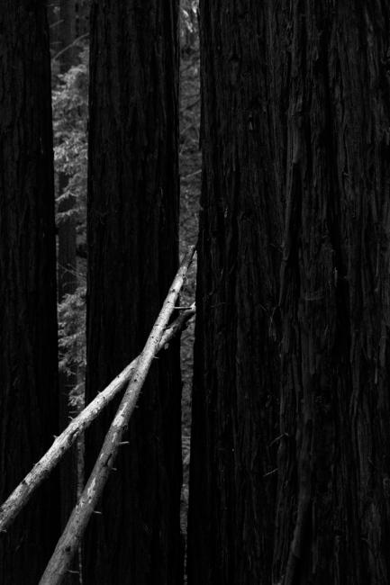Photography image - Loading Matt_Propert_monochrome_landscapes-1.jpg