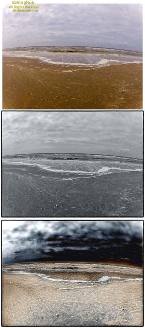 Zandvoort Tryptics