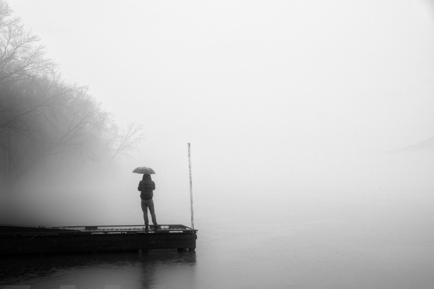 Art and Documentary Photography - Loading fog_umbrella.jpg