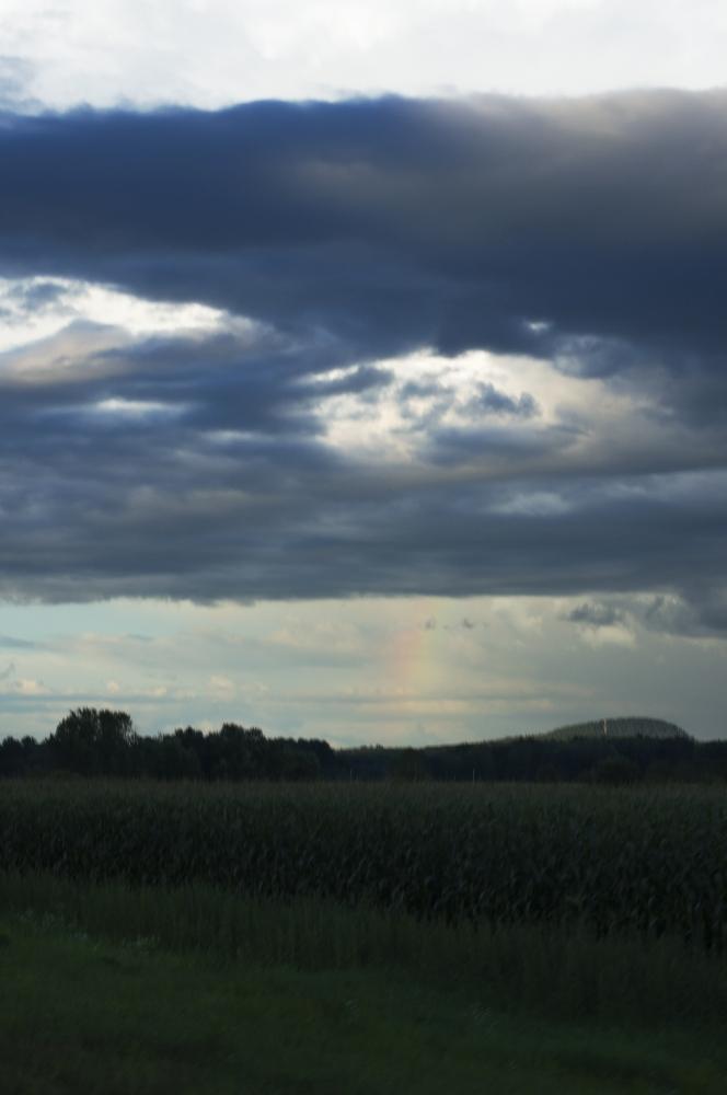 Art and Documentary Photography - Loading Rainbow_Field_1.jpg