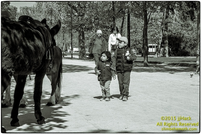 Art and Documentary Photography - Loading des_moments_de_paris_IMG_4930_0072.jpg