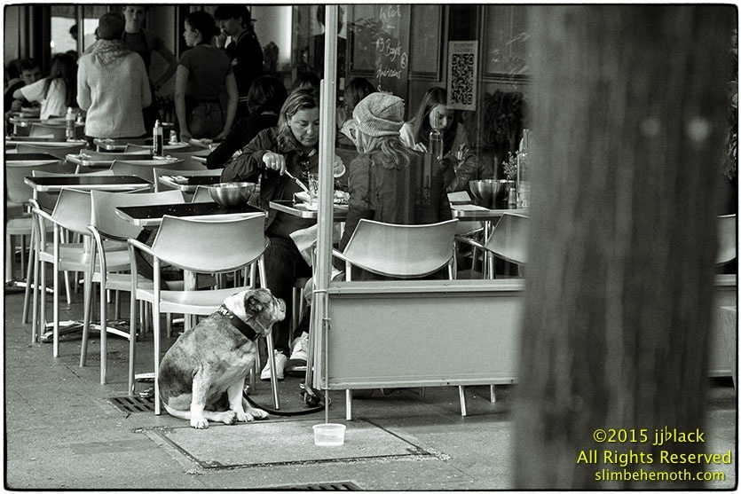 Art and Documentary Photography - Loading des_moments_de_paris_IMG_5308_0098.jpg