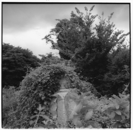 Art and Documentary Photography - Loading Broken_column.jpg