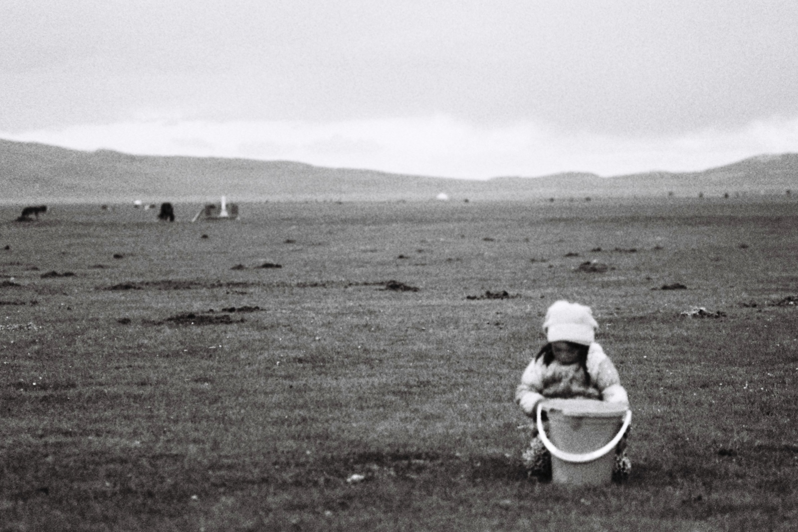 Art and Documentary Photography - Loading F1020028_2ndversion.JPG