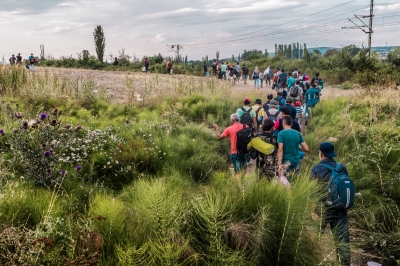 TABANOVTSE, MACEDONIA — AUGUST 25, 2015: A group of refugees is illegally crossing through the open border into Serbia.