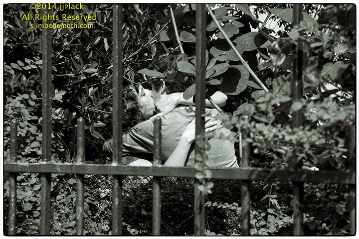 Art and Documentary Photography - Loading the_lovers_031.jpg
