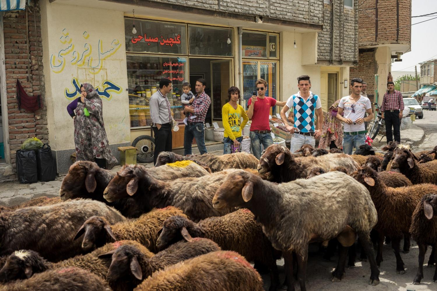 Art and Documentary Photography - Loading 010-iran_consumerism.jpg