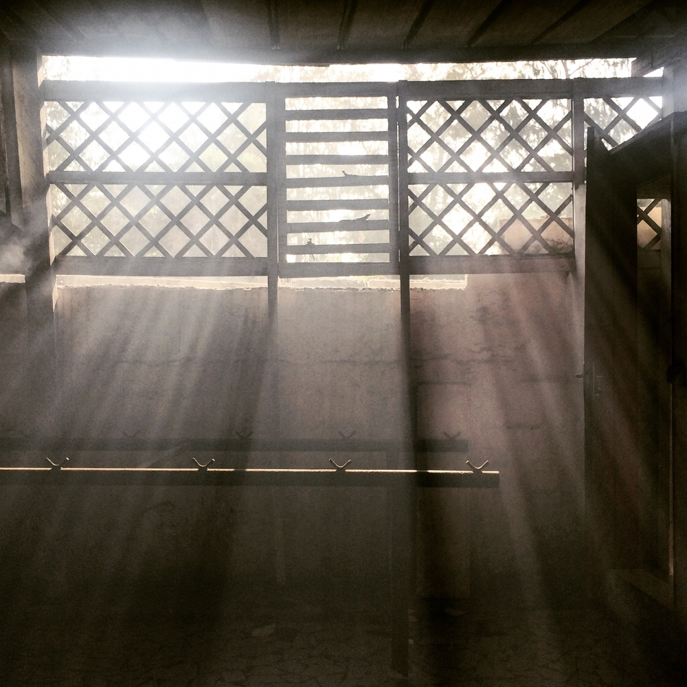 Art and Documentary Photography - Loading IMG_0404_afternoon_light_in_the_kitchen.jpg