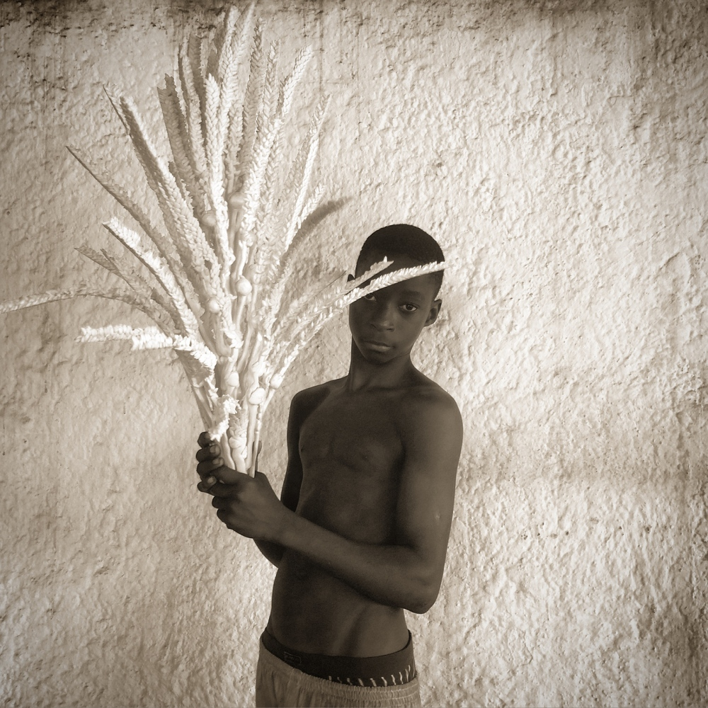 Art and Documentary Photography - Loading IMG_1436_cocotier.jpg