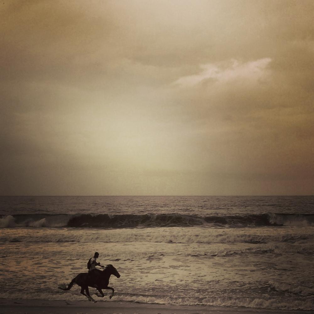 Art and Documentary Photography - Loading IMG_8854_horse.jpg