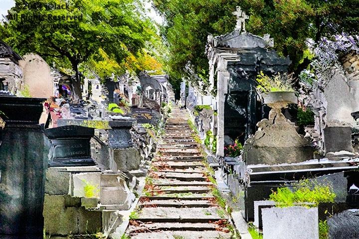 les cimetières de Paris aprés un Fauve inconnu