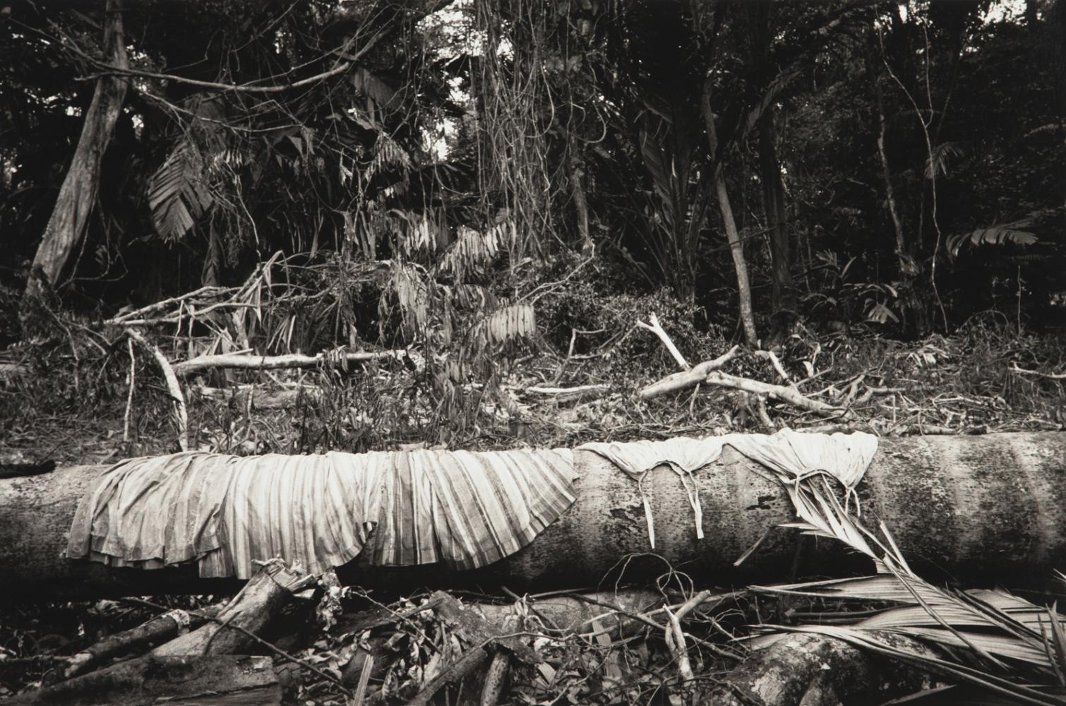 Art and Documentary Photography - Loading WEB_Waniku_AndreaSantolaya-12.jpg