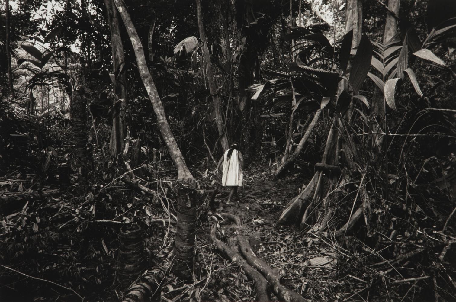 Art and Documentary Photography - Loading WEB_Waniku_AndreaSantolaya-19.jpg