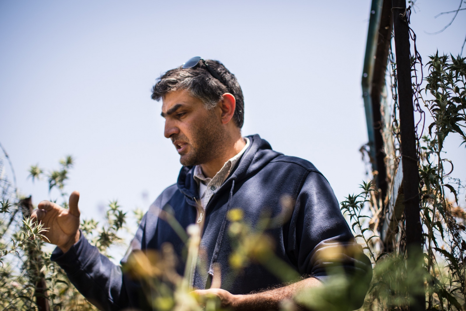 """My father always told me that trees bring rain, but I never understood what he meant until I started this work,"" said Abed Rahman Sultan, park director of the Sharhabil bin Hassneh Eco Park in the Jordan Valley. The park is run by Eco Peace Middle East, which has been critical of the Dead-Red Sea Canal project after conducting environmental feasibility studies."
