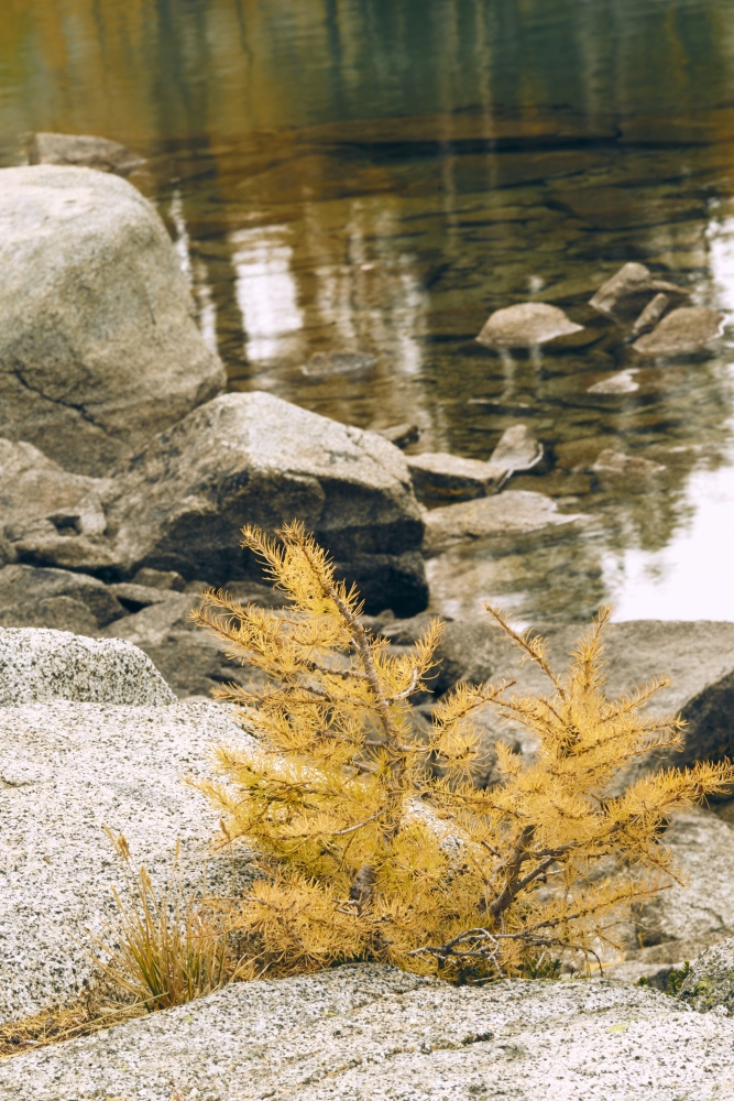 Art and Documentary Photography - Loading Enchantment-Lakes-_466.jpg