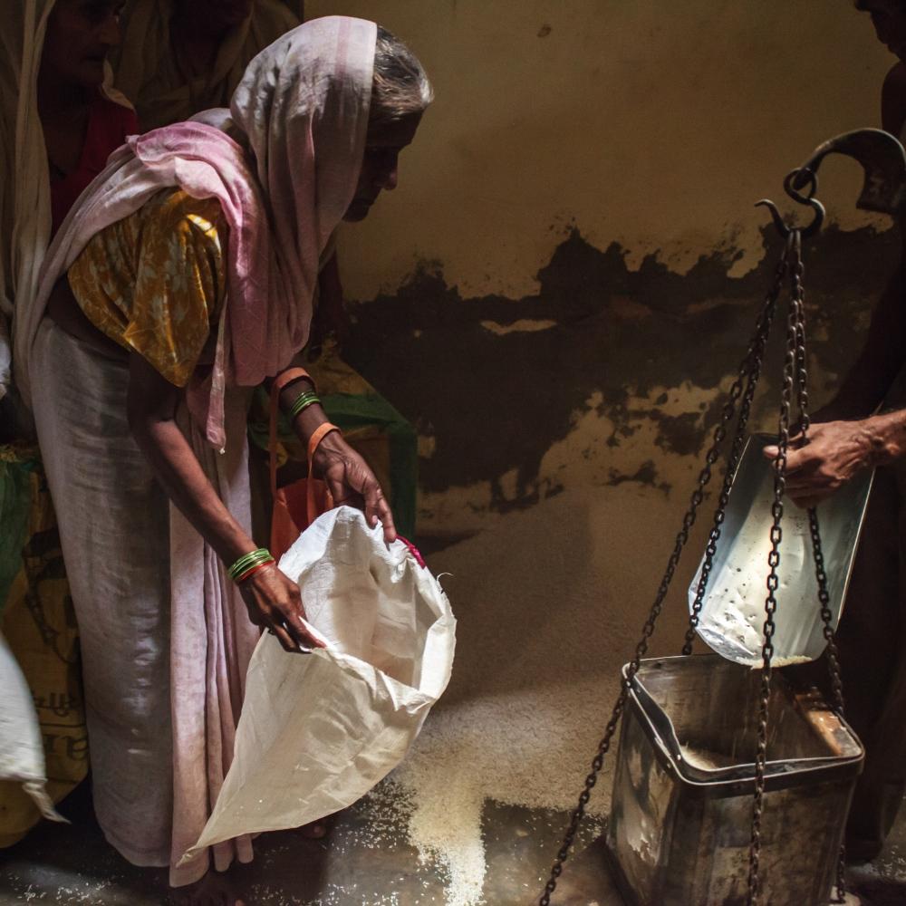 6 Sep 2014 - Vrindavan, India - Widows at the Chaitanya Vihar ashram in Vrindavan, Uttar Pradesh receive their 8 kg monthly ration of rice from the government of Uttar Pradesh.