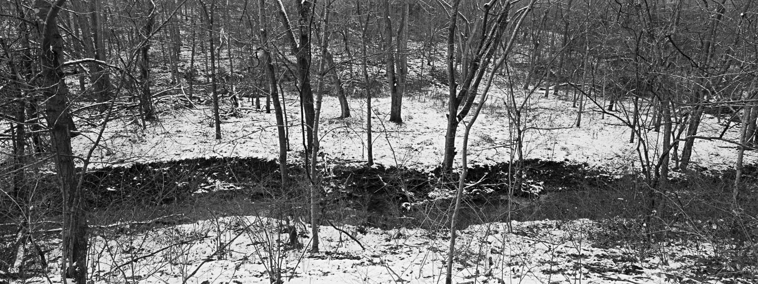Winter Archival digital print 24 x 10 2010