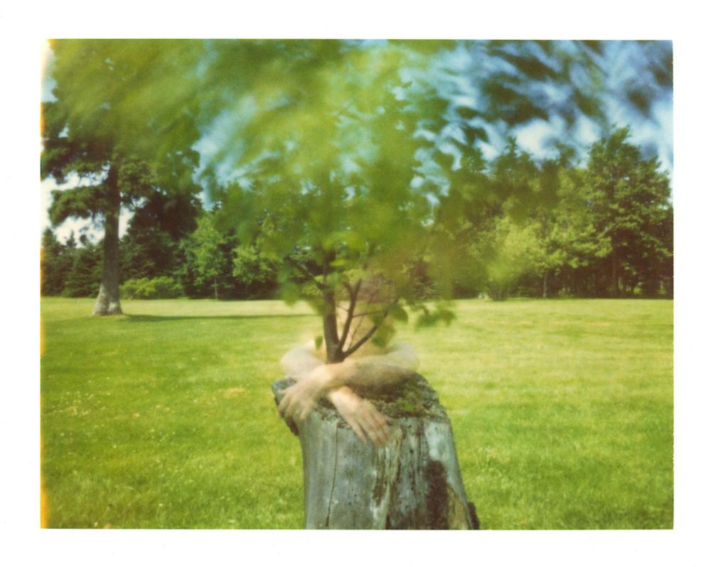 Art and Documentary Photography - Loading 03_treeme_06a_2sm.jpg