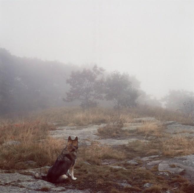 Art and Documentary Photography - Loading theodysseus013.jpg