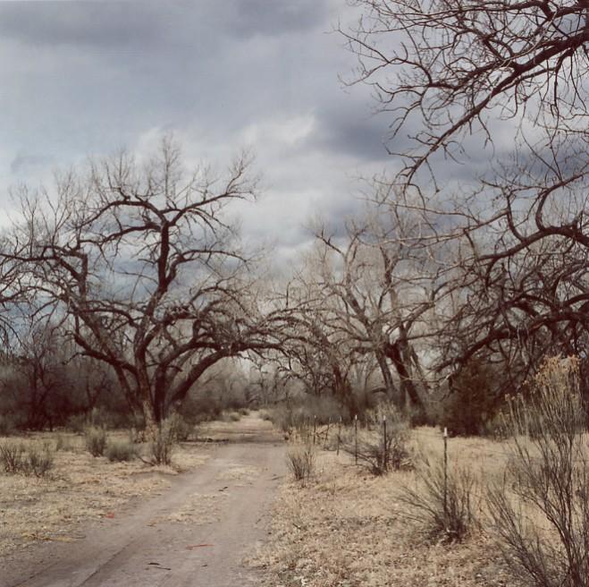 Art and Documentary Photography - Loading theodysseus022.jpg