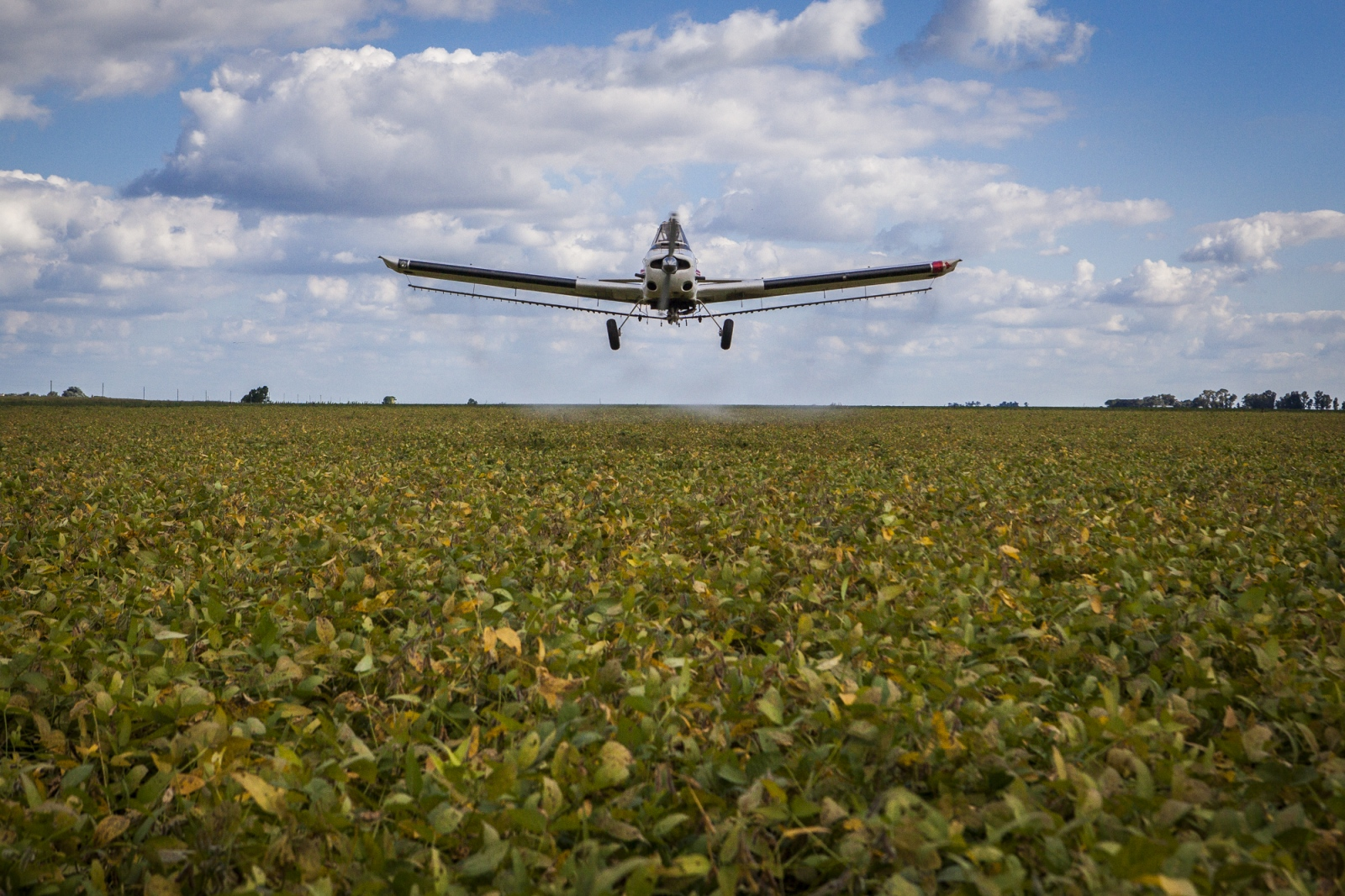 A plane fumigates a soy field close by the town of Monte Maiz. Residents claim that the aerial pulverizations are one of the many causes for the cases of cancer grow exponentially in the area since the introduction of glyphosate on the soya cultivation. 26,000,000 litres of pesticides are sprayed in Argentina - which per hectare is ten times more than in the USA.