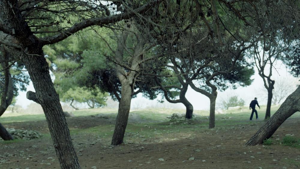 Photography image - Valletta Gardens, 2013