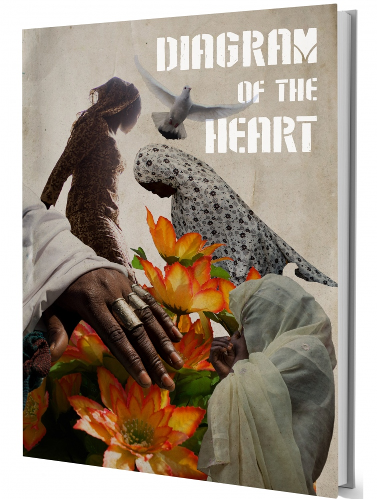 Diagram of the Heart By Glenna Gordon Red Hook Editions,2015 Listed by NYTimes as a Staff Pick from 2016