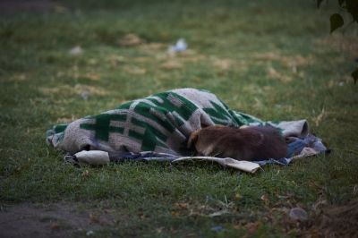 Bilan (14), sleeping with his dog in Bhugol Park.