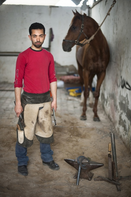 'The Horse is an honest beast' says 27 year old Abood Rahma Ghefray. He is the Gaza Strip's only blacksmith. Trained by his father since the age of 14 and furthered his equestrian education at the 'British University' in Jordan. He re-shoes approximately 40 horses per month. Abood is also a keen horse racer himself.
