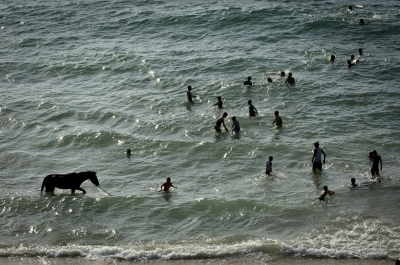 The beach is the recreational centre of Gaza. This includes the horses of Gaza as well.