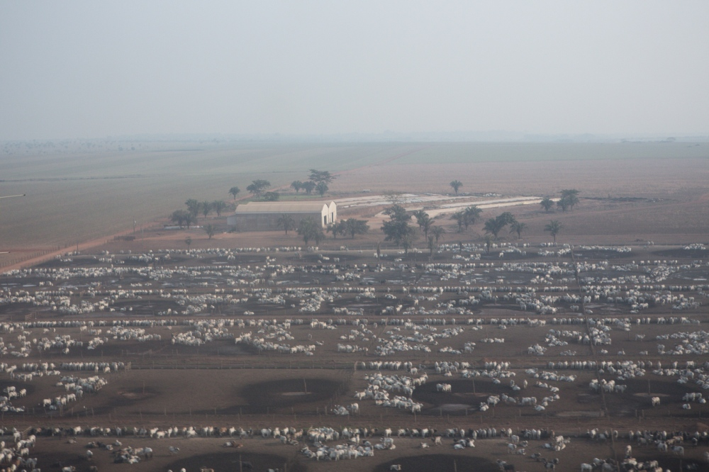 Aerial view of one of Agropecuaria Rodrigues da Cunha farm, showing the cattle feedlot on confinement system. Pontes e Lacerda, Mato Grosso, Brazil, 2015