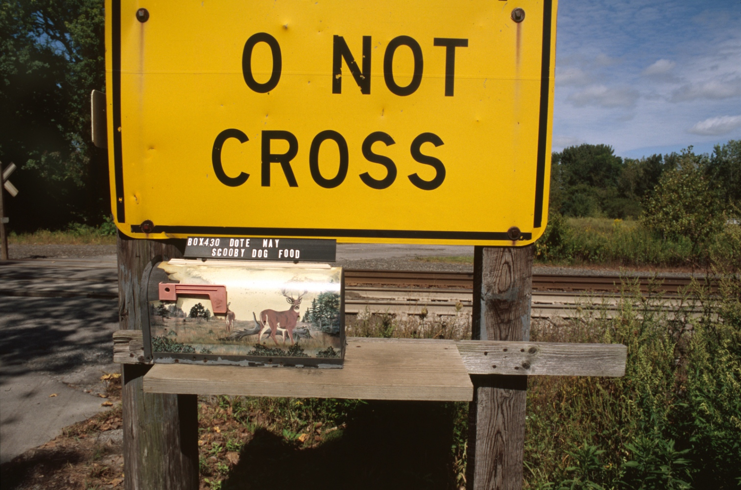 O Not Cross, freight and Passenger trains pass through here, en route from Buffalo to New York City, Utica, NY