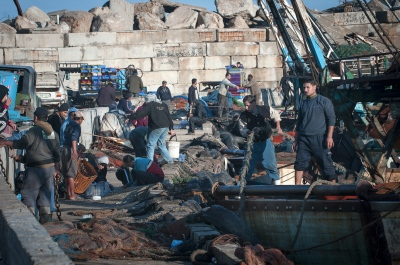 Fishermen making ready their boats. Early morning at Gaza sea port, Gaza City, Gaza Strip.