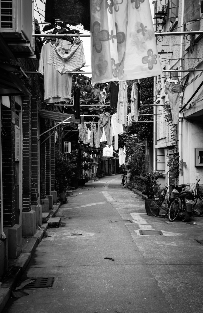 The narrowness of these lanes allows for a calm amidst the chaos of the city.