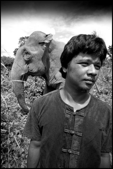 Mahout Dong with elephant Pang Suai (Miss Beutifull) at Boon Lotts Elephant Sanctuary, Baan Na Ton Jan, Tambon Baan Tuck, Si Satchanalai, Sukhothai, Thailand.