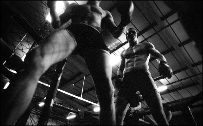The fighting is always between two fighters, never in groups.The classic scene is an octogonal cage with open roof.