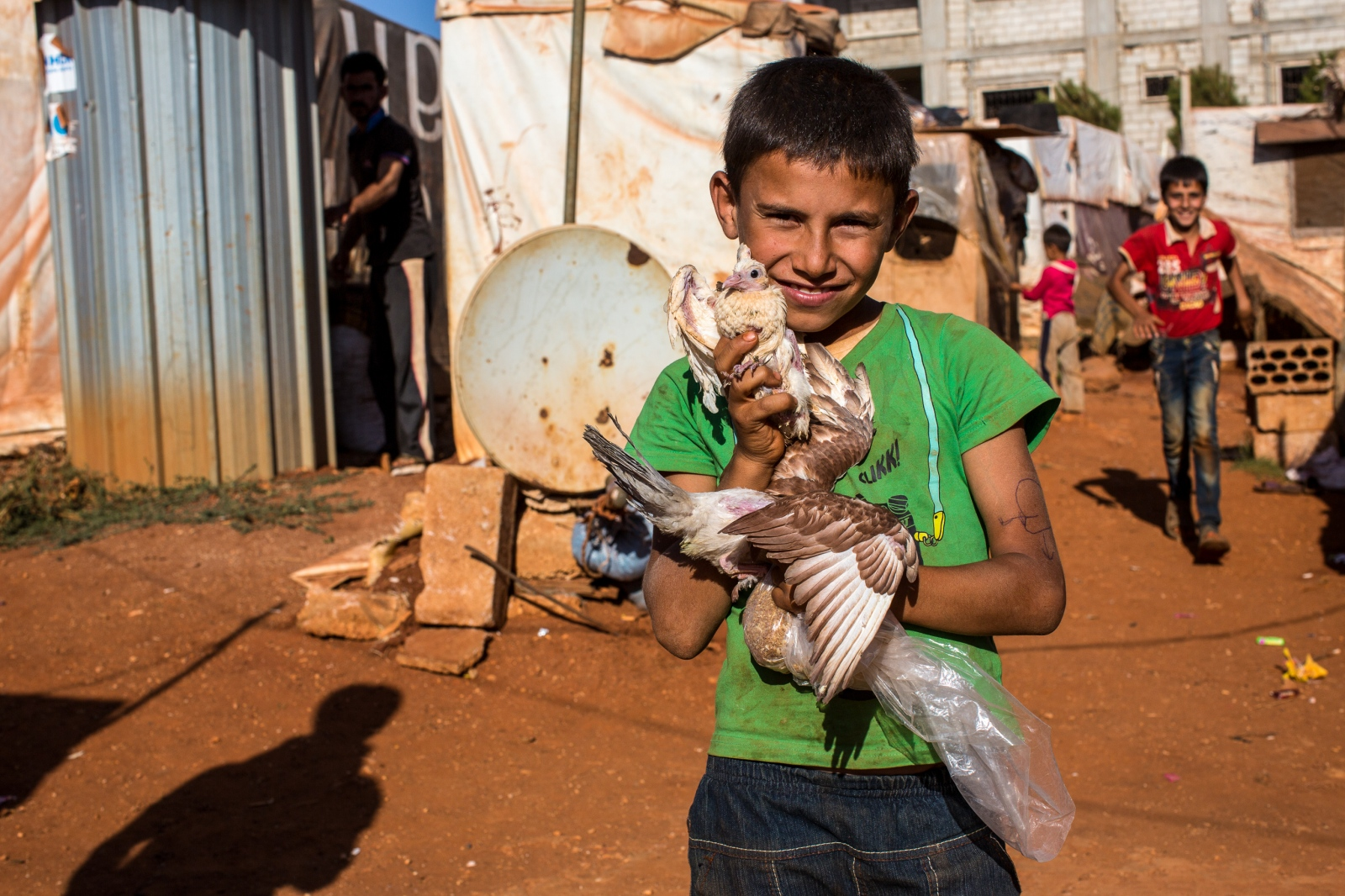Bekaa Valley, LEBANON, September 5, 2014: Ahmad (10) plays with a bird that he caught. His brothers and father are looking for work in the village of Zahle, while he helps his mother with all kinds of tasks as she is raising three toddlers.
