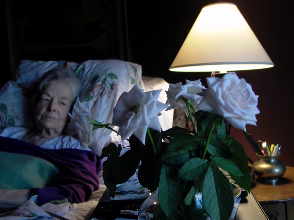 Photography image - Loading 1_ew_1_anne_roses.jpg