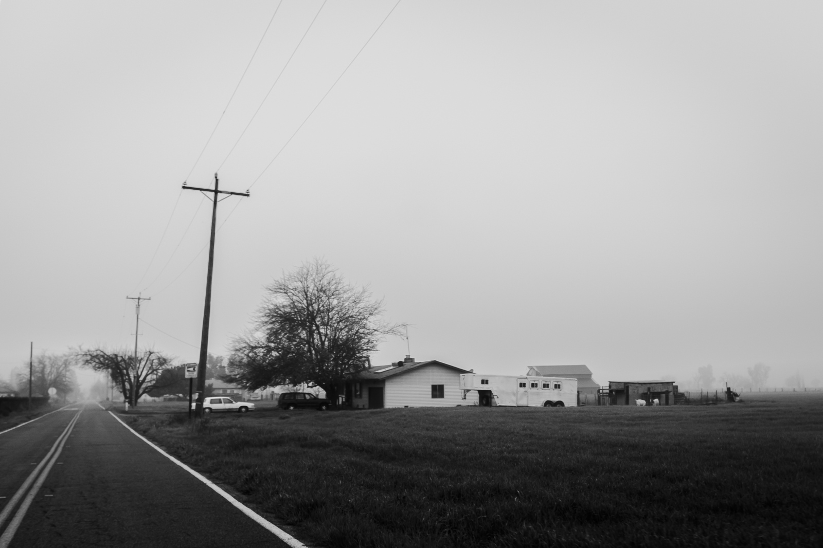 Small Roads and Deep Fog, Lodi, Ca