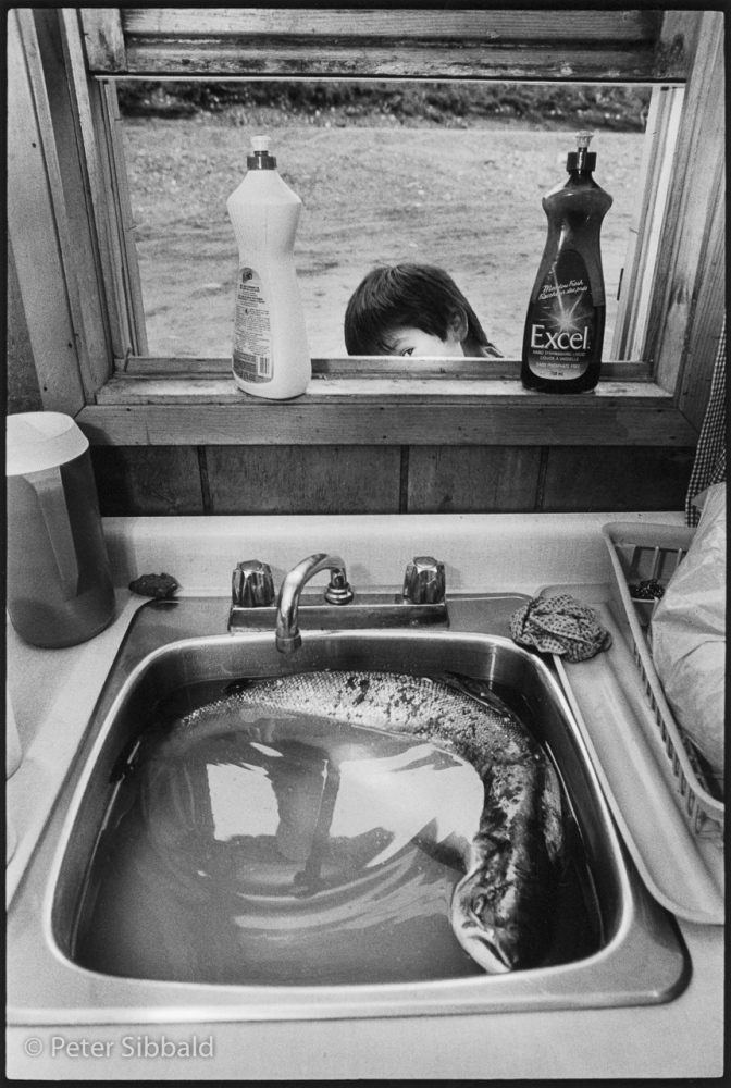 Art and Documentary Photography - Loading 030-13-boy-rock_bass_in_sink.jpg