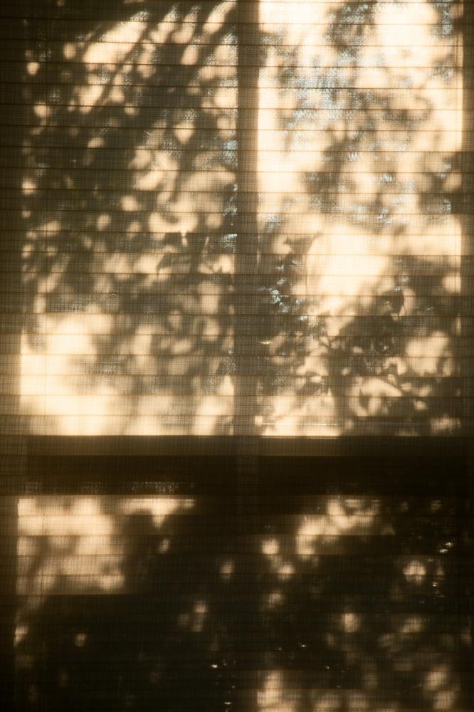 Art and Documentary Photography - Loading Platitudes-01.jpg