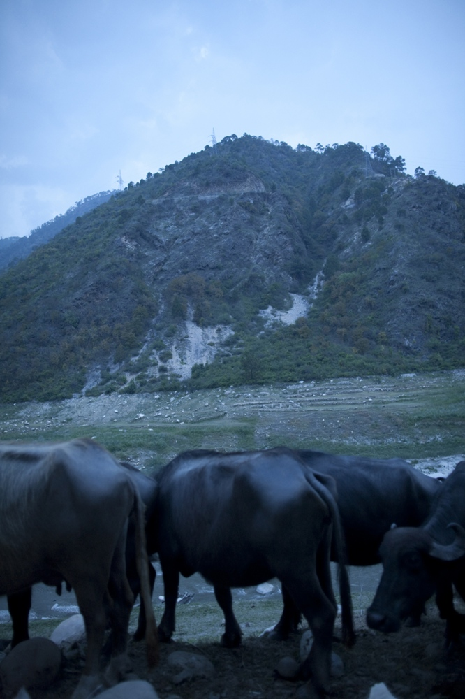 Art and Documentary Photography - Loading Nomads_(26).jpg