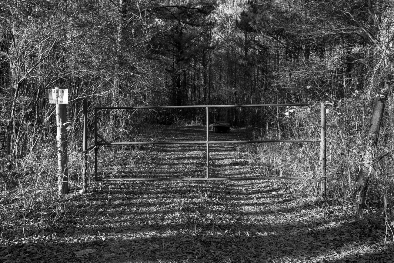Neshoba County, MS. 12/3/2015. On June 24, 1964 the burned shell of a Ford station wagon used by three missing civil rights workers - Andrew Goodman, James Chaney and Michael Schwerner was found 80-feet into this portion of woods once used as a logging track. The three missing bodies were discovered on August 4, 1964 buried in an earthen dam on a farm six miles southwest of Philadelphia, Mississippi. More than 200 agents were involved in the investigation. On June 21, 2005, the forty-first anniversary of the three murders, 80-year old Edgar Ray Killen, a part-time Baptist minister was found guilty of three counts of manslaughter and sentenced to 60 years in prison.